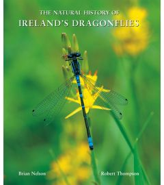 The Natural History of Ireland's Dragonflies